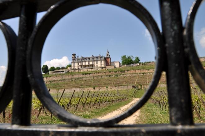 chateau d'isenbourg Roffach